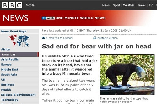 BBC news headline bear with jar on head