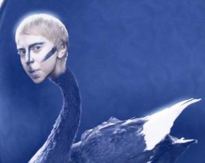 lady gaga swan