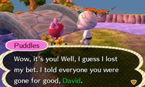 puddles loses bet